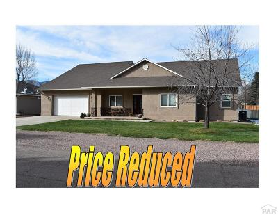 Canon City Single Family Home For Sale: 945 Dewey Street