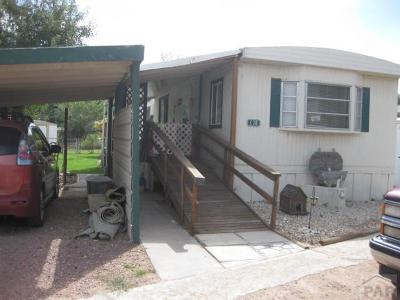 Canon City Single Family Home For Sale: 1431 Walnut Ave #C-10