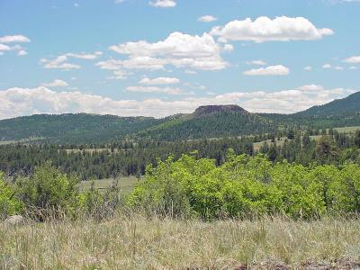 Canon City Residential Lots & Land For Sale: Tbd Canyon Ln