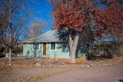 Canon City Single Family Home For Sale: 1540 Colorado Ave