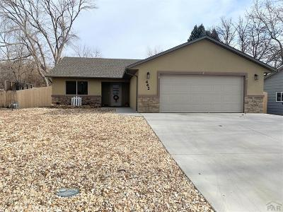 Canon City Single Family Home For Sale: 442 Crestmoor Rd