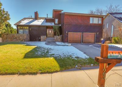 Pueblo Single Family Home For Sale: 123 Ironweed Dr