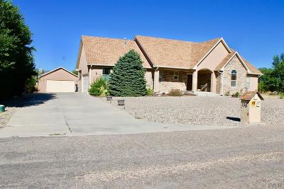 Pueblo West Single Family Home For Sale: 135 S Trevino Dr