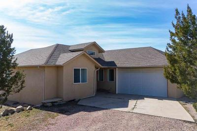 Pueblo Single Family Home For Sale: 7678 Soda Creek Rd
