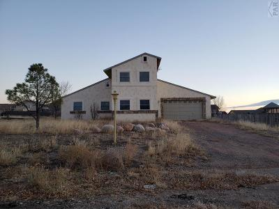 Pueblo West Single Family Home For Sale: 552 S Bellflower Dr
