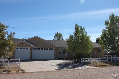 Pueblo West Single Family Home For Sale: 852 S Glenvista Dr