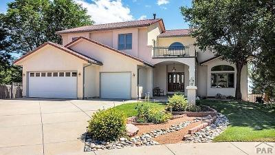 Pueblo Single Family Home For Sale: 34 Heather Ct.