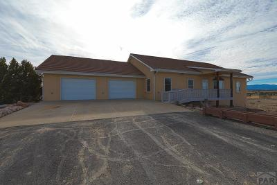Pueblo Single Family Home For Sale: 4474 Burnt Mill Rd
