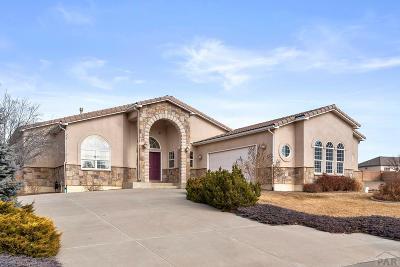 Pueblo Single Family Home For Sale: 1619 Augusta Court