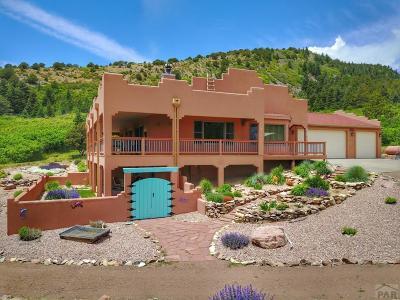 La Veta CO Single Family Home For Sale: $695,000