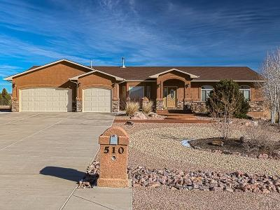 Pueblo West Single Family Home For Sale: 510 S Ferncliff Dr