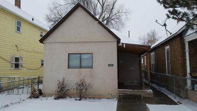 Pueblo Single Family Home For Sale: 1029 Spruce St