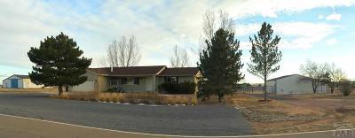 Pueblo West Single Family Home For Sale: 496 E Earl Dr