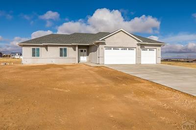 Pueblo West Single Family Home For Sale: 1563 N Bowen Dr