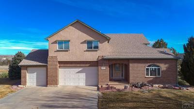 Pueblo Single Family Home For Sale: 5419 Cragmoor Dr