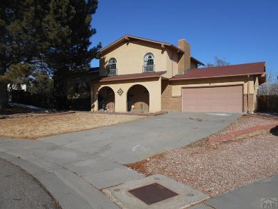 Pueblo Single Family Home For Sale: 8 Courtney Place