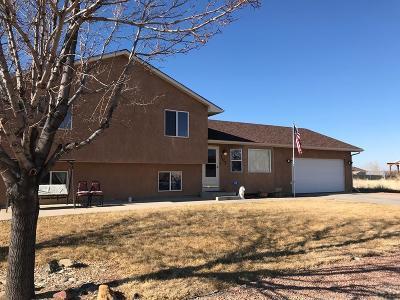 Pueblo West Single Family Home For Sale: 707 S McCoy Dr