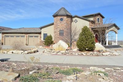 Pueblo West, Pueblo, 81005 Pueblo Co Single Family Home For Sale: 11 Judy's Dream Ln