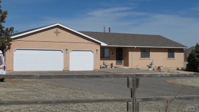Pueblo West Single Family Home For Sale: 725 E Thistle Dr