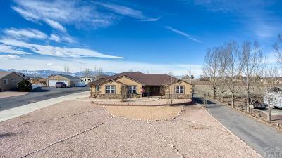 Pueblo West Single Family Home For Sale: 1125 S Avenida Del Oro E