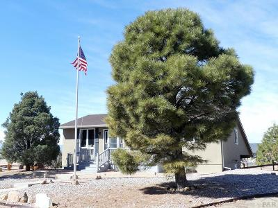 Pueblo West Single Family Home For Sale: 650 S Granby Lane