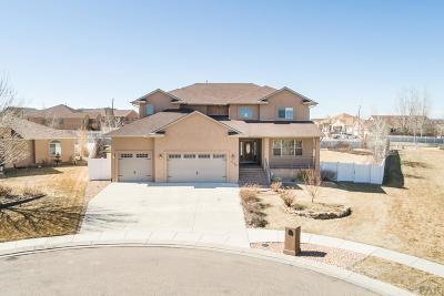 81005 Pueblo Co, Pueblo West, Pueblo Single Family Home For Sale: 5135 Cabazon Court
