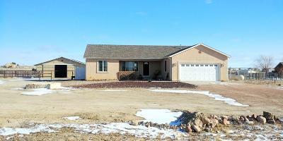 Pueblo West Single Family Home For Sale: 1442 N Platteville Blvd