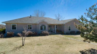 Pueblo Single Family Home For Sale: 7686 South Lane