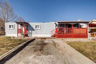 Pueblo Single Family Home For Sale: 1515 E Beech St