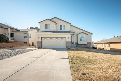Pueblo Single Family Home For Sale: 4 Deer Run Court