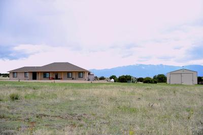 Pueblo Single Family Home For Sale: 4655 Black Horse Dr