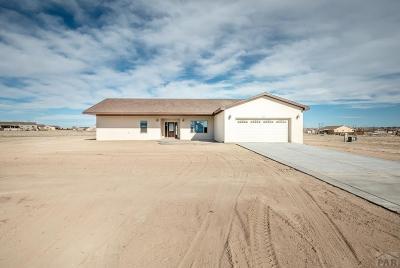 Pueblo Single Family Home For Sale: 1034 S McCulloch Blvd