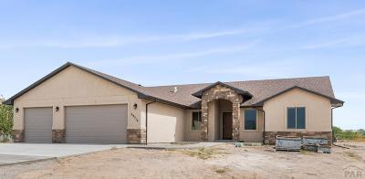 Pueblo Single Family Home For Sale: 29719 South Rd