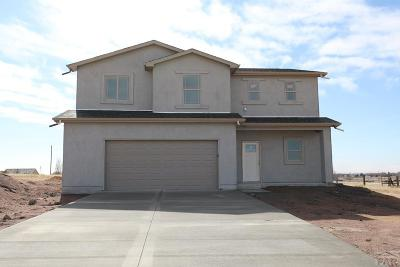 Pueblo West Single Family Home For Sale: 1334 N Scandia Dr