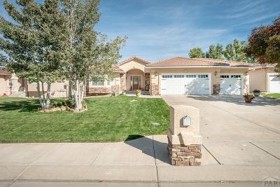 Pueblo Single Family Home For Sale: 68 Altadena Dr