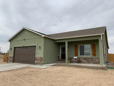 Pueblo Single Family Home For Sale: 917 23rd Lane