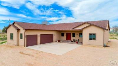 Pueblo Single Family Home For Sale: 29697 South Rd