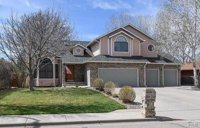 Pueblo Single Family Home For Sale: 4607 Cedarweed Blvd