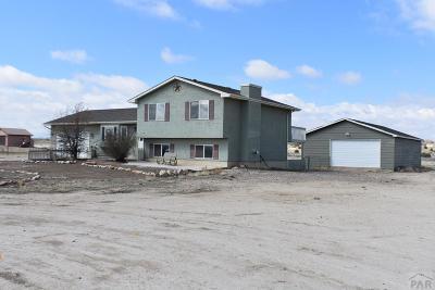 Pueblo West Single Family Home For Sale: 741 S Ignacio Dr