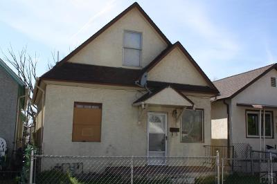 Pueblo Single Family Home For Sale: 1229 Eilers Ave