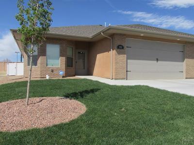 Pueblo Single Family Home For Sale: 1901 Lynda Lane