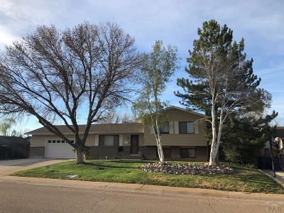 Pueblo Single Family Home For Sale: 2105 Rangeview Dr