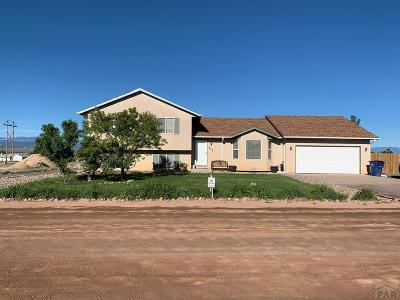 Pueblo West Single Family Home For Sale: 953 S Rosa Linda Dr
