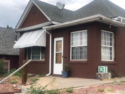 Pueblo Single Family Home For Sale: 930 Box Elder St