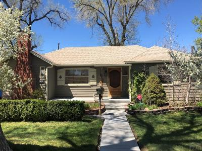 Pueblo Single Family Home For Sale: 219 Garfield Ave