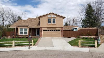 81005 Pueblo Co, Pueblo West, Pueblo Single Family Home For Sale: 9 Silverweed