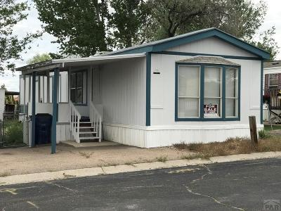 Pueblo Single Family Home For Sale: 5000 Red Creek Springs Rd #73