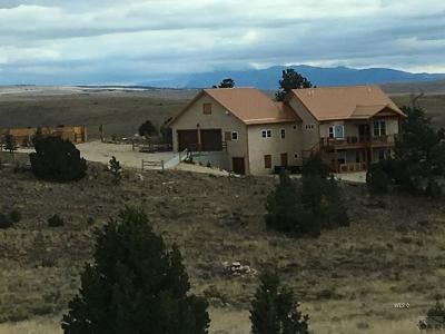 Westcliffe CO Single Family Home For Sale: $598,000