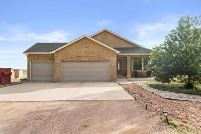 Pueblo West Single Family Home For Sale: 1229 N Challenger Pl