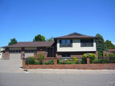 Pueblo Single Family Home For Sale: 61 Portero Dr